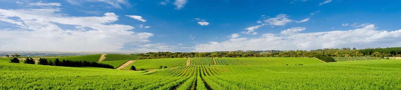 Наследствени имоти и земя